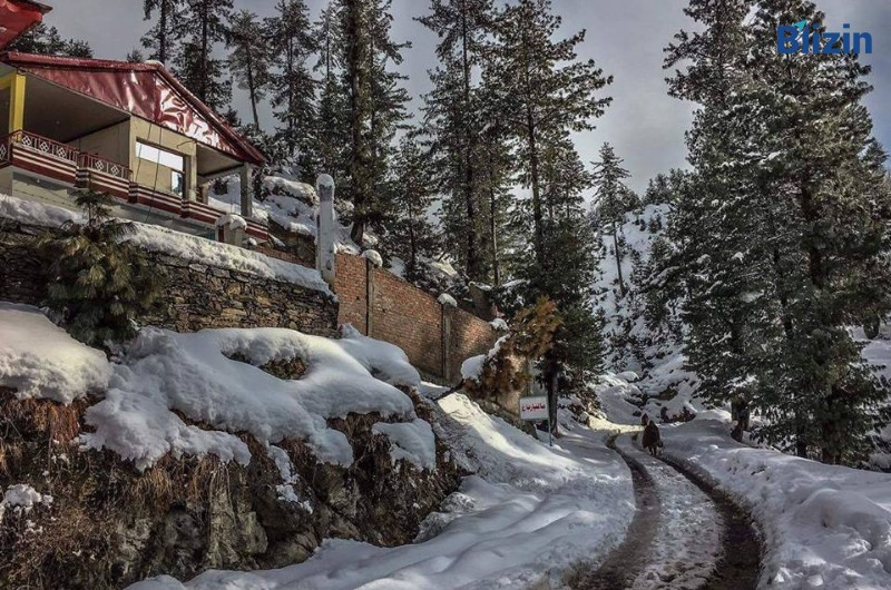 3 days 2 nights islamabad to malam jabba deluxe family tour spring package