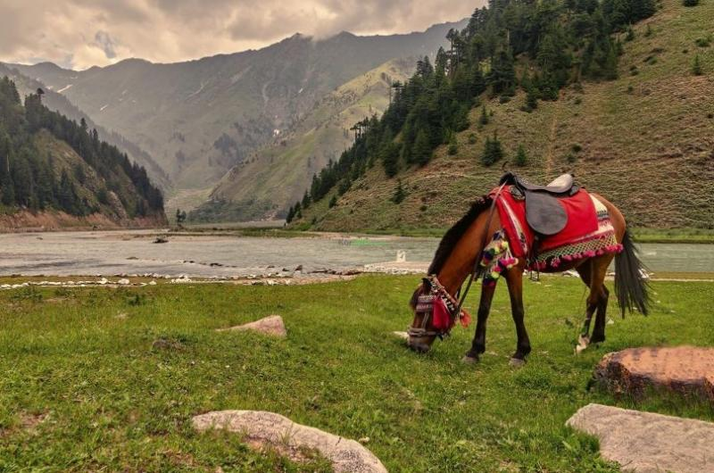3 Days Tour To Naran – For Couple