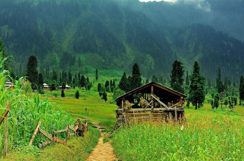 4 Days Private Honeymoon Tour To Neelam Valley and Nathiagali