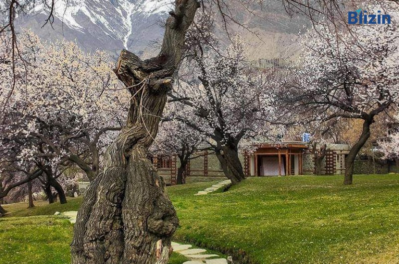 5 days 4 nights islamabad to hunza valley standard honeymoon tour summer package