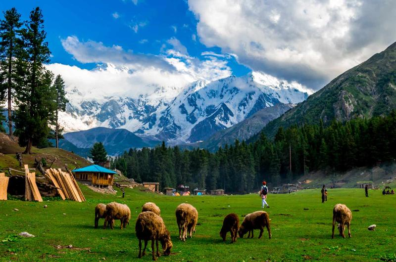 5 Days tour to Fairy Meadows and Naran