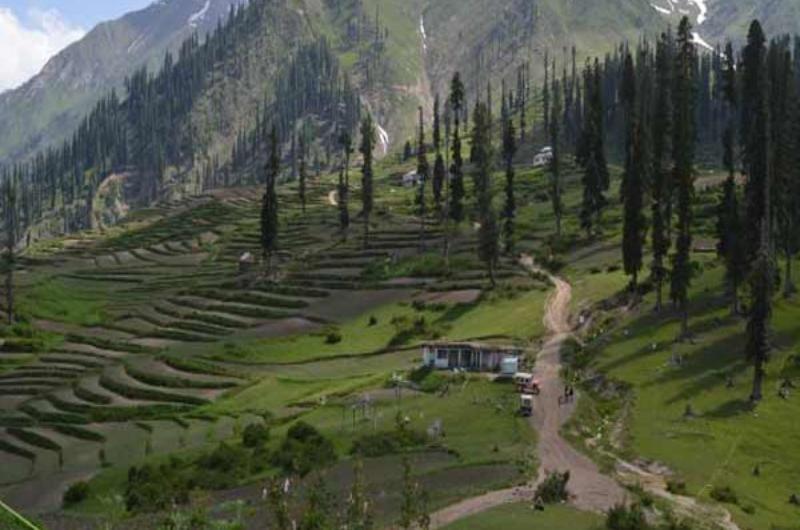 5 Days tour to Naran, Shogran And Babusar Top