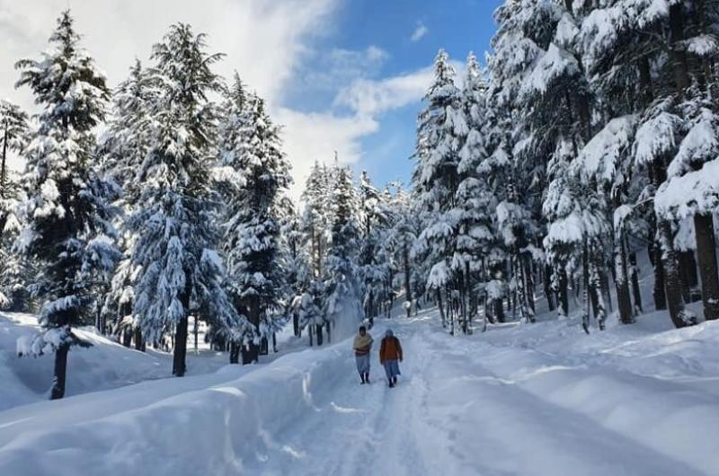 7 Days Executive Tour To Swat – For Foreigners
