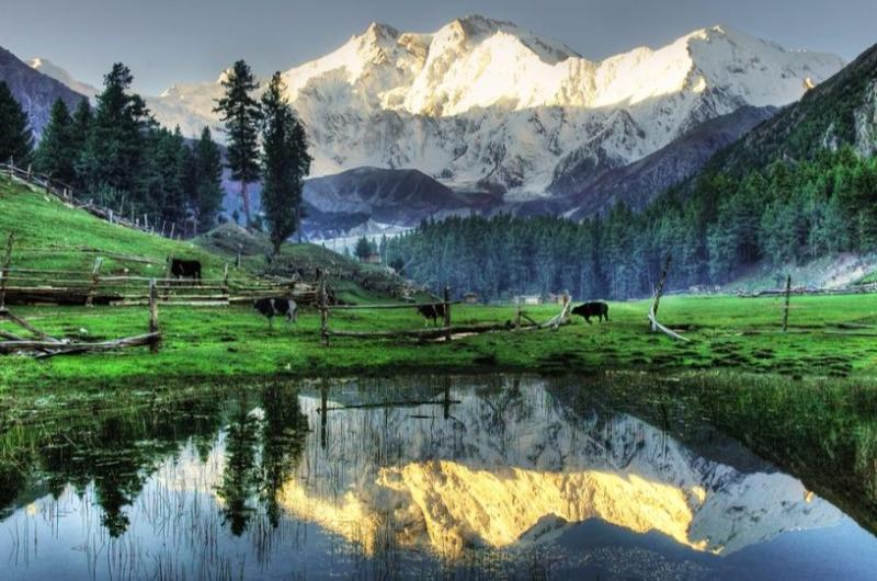 7 Days Tour to Fairy Meadows & Hunza Valley (Honeymoon Tour)