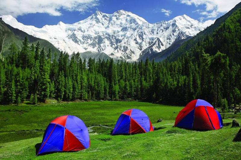 Winter Survival New year celebrations at Fairy meadows.